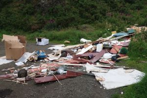 Appeal for witnesses to illegal fly-tipping at Bathgate landmark